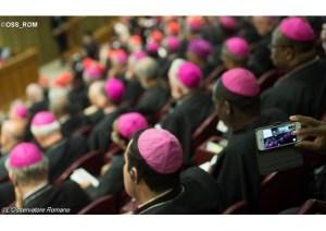 Synode-medias
